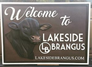 HDU Sandblasted and Hand Carved Sign