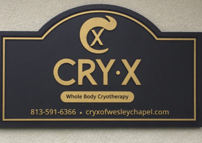 Routed Sign for Cry-X